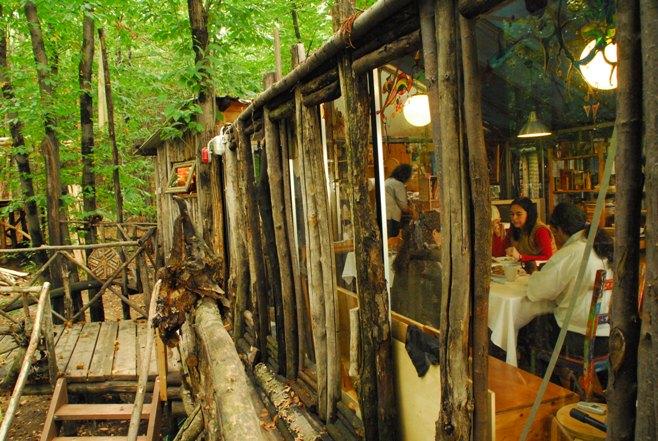 Un villaggio di case sugli alberi for Case in legno sugli alberi
